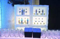 frozen display light za najam